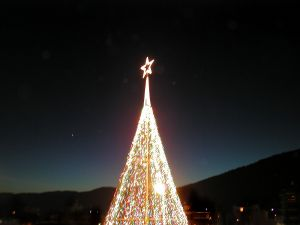 christmas-star-77979-m